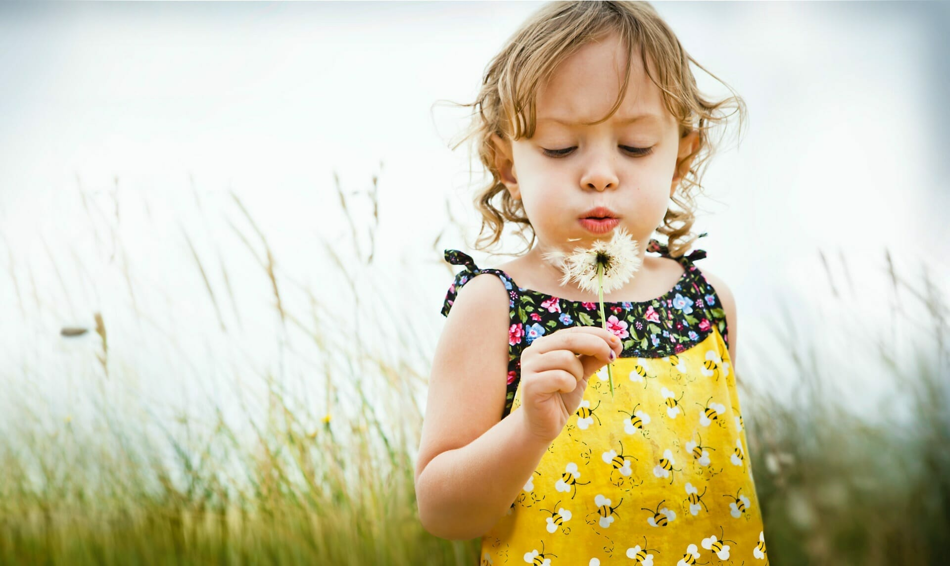 Image of a toddler blowing on a dandelion in a field